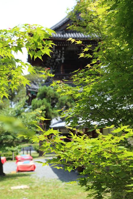 Seiryouji1405311