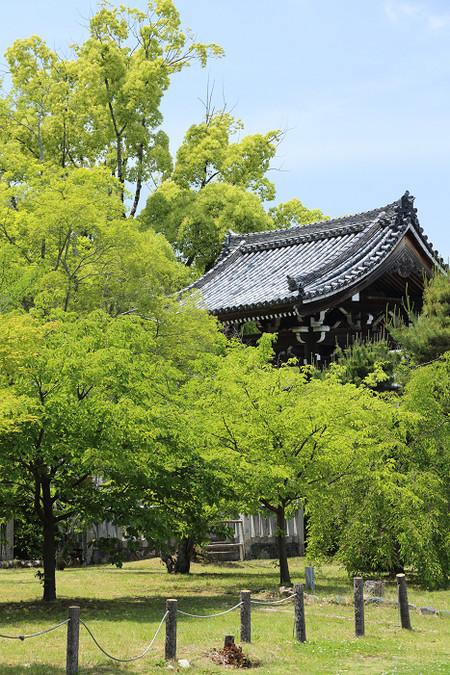 Seiryouji1405315