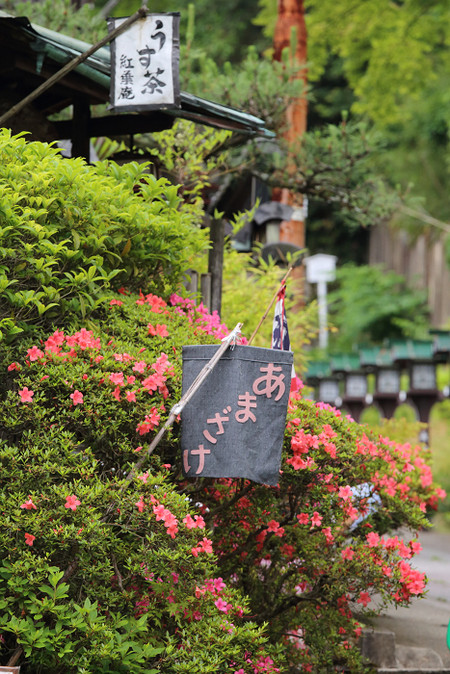 Maruyamakouen1406025