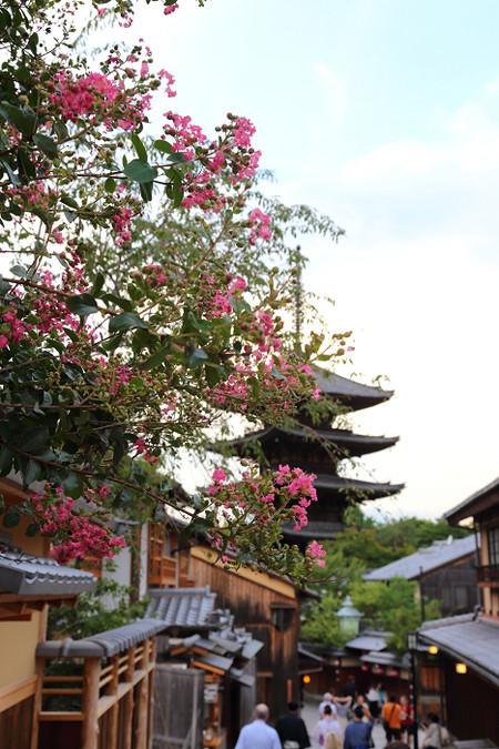 Yasakanotou1408156