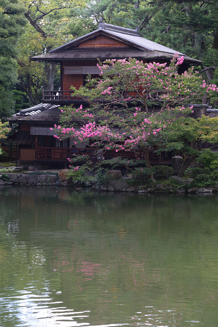 Kyotogyoen1409025