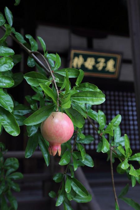 Myoukenji1409255