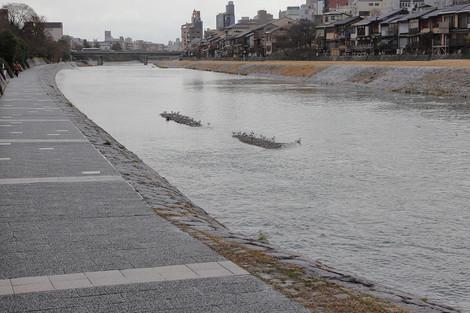 Kamogawa1501223