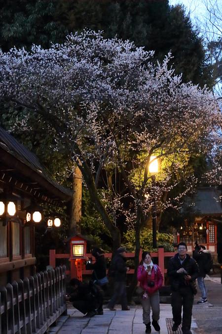 Yasakajinjya1503151