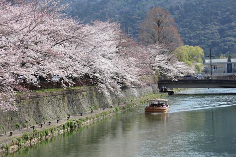 Okazaki1503281