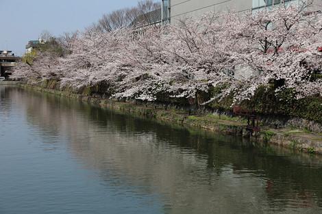 Okazaki1503283