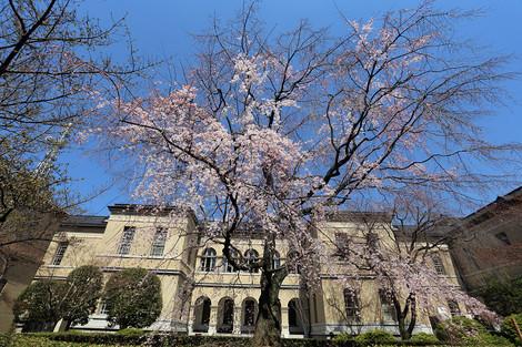 Kyotofutyou1504012