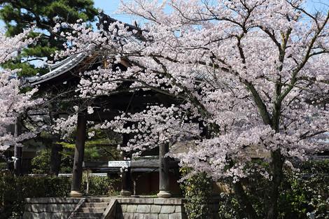 Myoukenji1504063