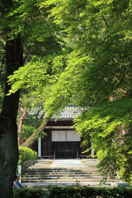 Syoukokuji1504303