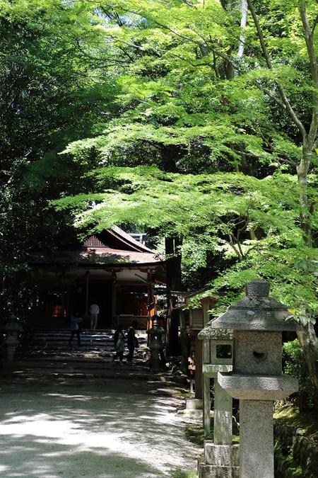 Ootanosawa1505072