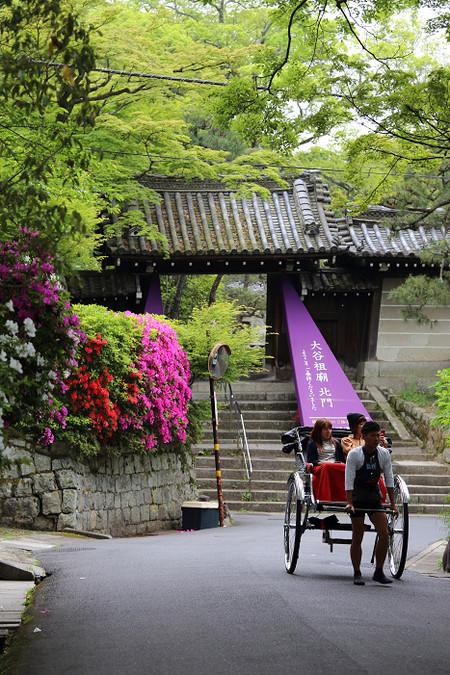 Maruyamakouen1505155