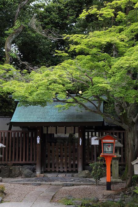Yasakajinjya1505141