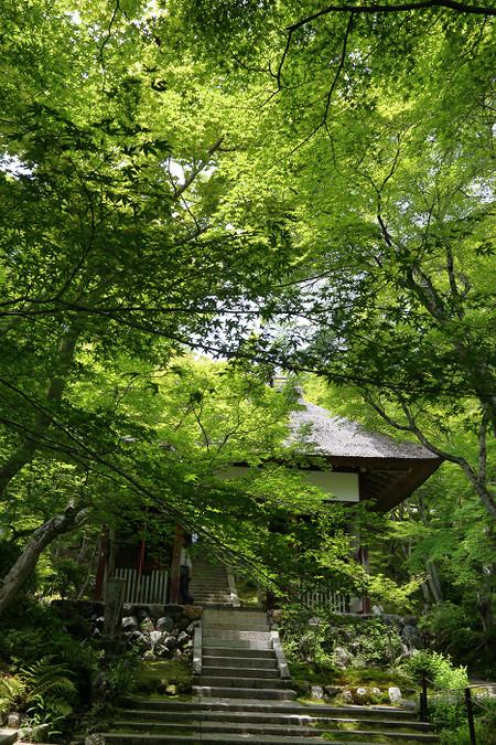 Jyoujyakouji1506202