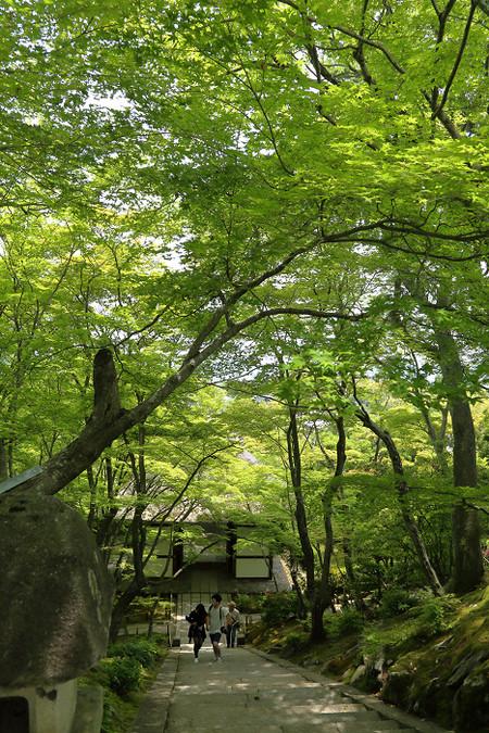 Jyoujyakouji1506203