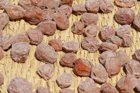 Kitanotenmanguu1508163
