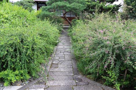 Jyourinji1509061