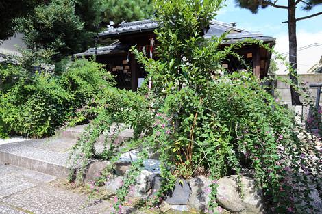 Sainokaminoyasiro1509162