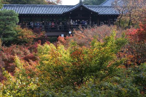 Toufukuji1511236