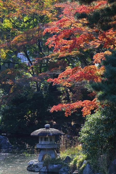 Maruyamakouen1512051