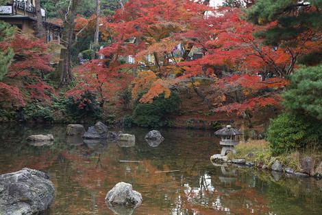 Maruyamakouen1512131