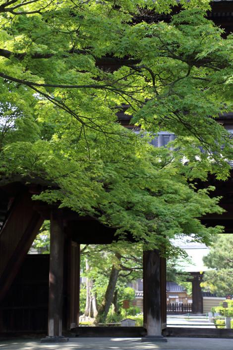 Kenninji1605093