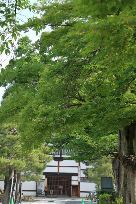 Kenninji1605095