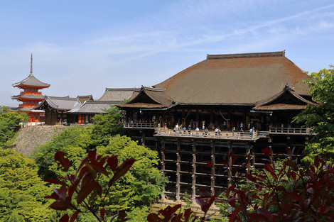Kiyomizudwra1605135