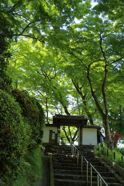 Seikanji1605151