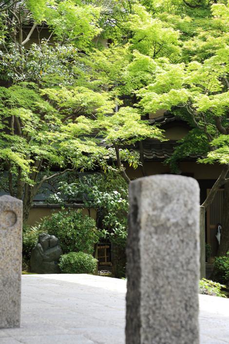 Yasakanotou1605106