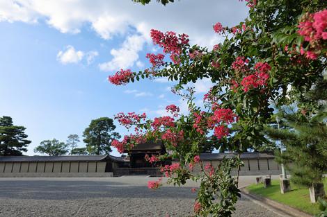 Kyotogyoen1608251