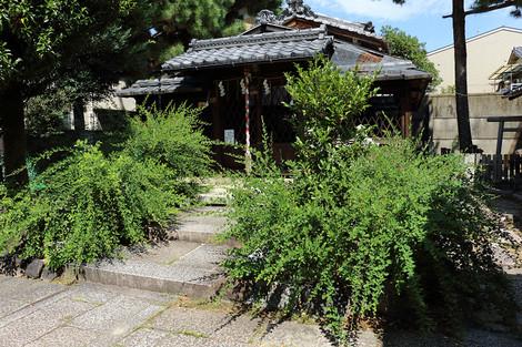 Sainokaminoyasiro1609141