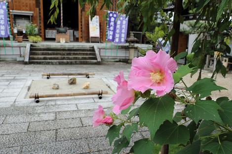 Houjyuuji1610061