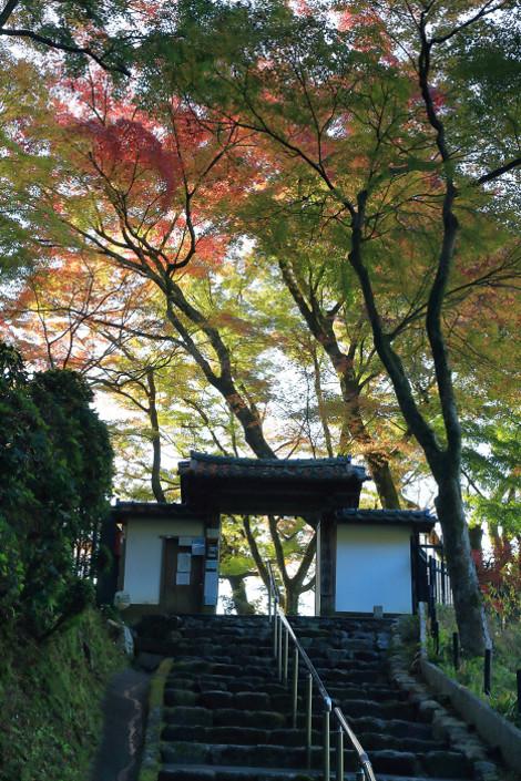 Seikanji1611301