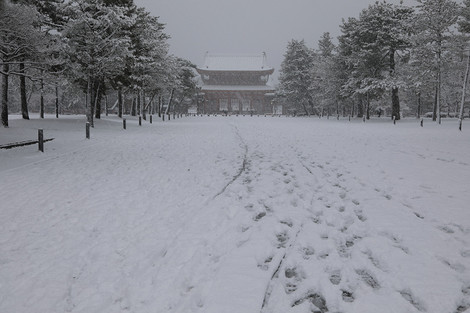 Heianjingu17232