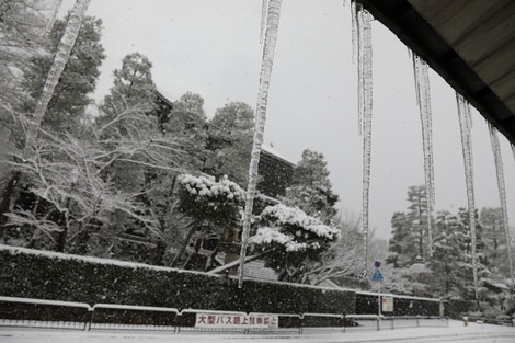 Maruyamakouen1701236