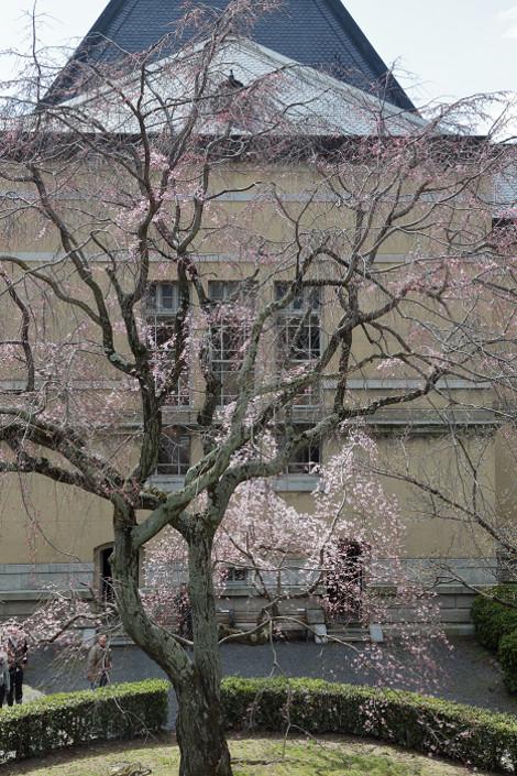 Kyotofutyou1703063