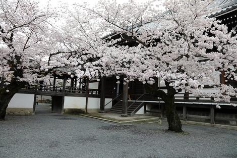 Myoukenji1704101