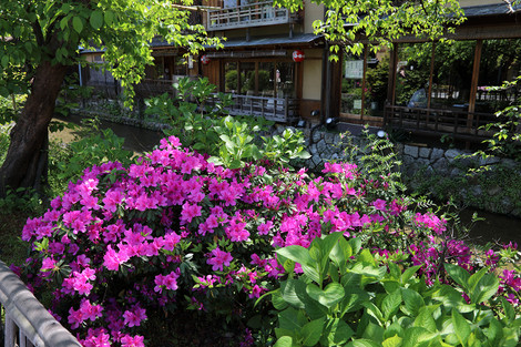 Gionsirakawa1705032