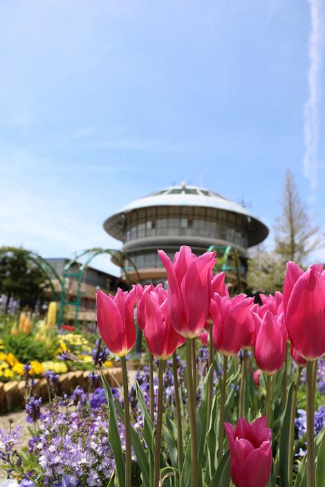 Gardenmuseumhiei1705052