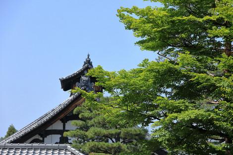 Syoukokuji1705273