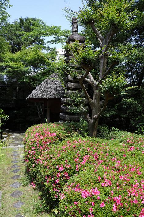 Nobotokean1706063