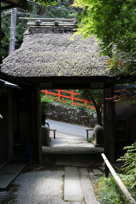 Nobotokean1706066