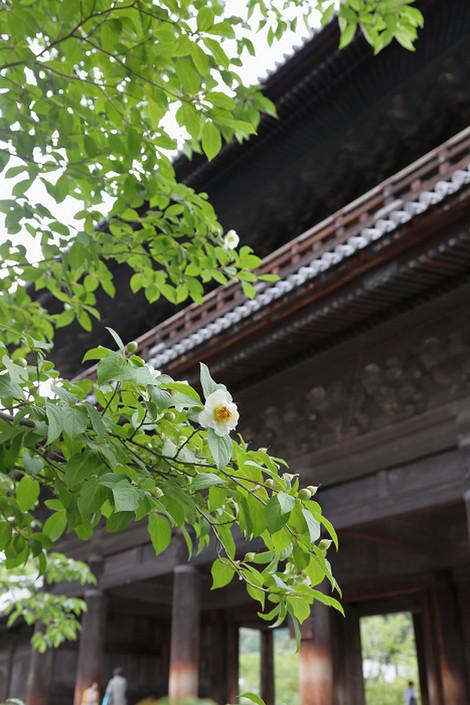 Nanzenji1707031