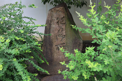 Hananogosyo17078011