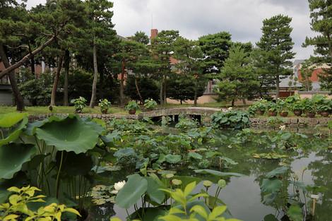 Syoukokuji1707315