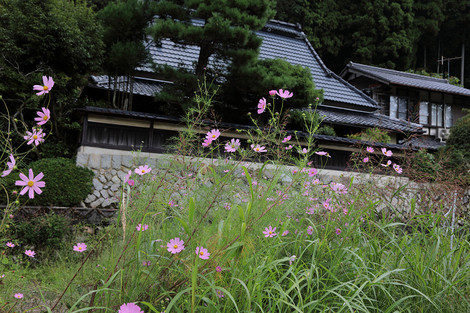 Kosumosu1709263