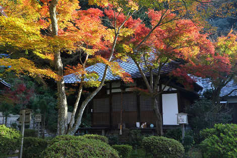 Seikanji1712016