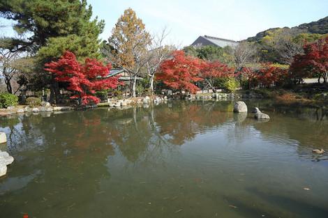 Maruyamakouen1712031