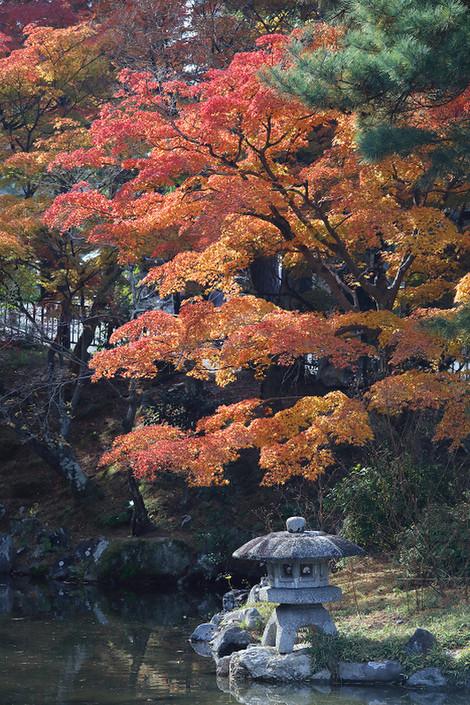 Maruyamakouen1712032