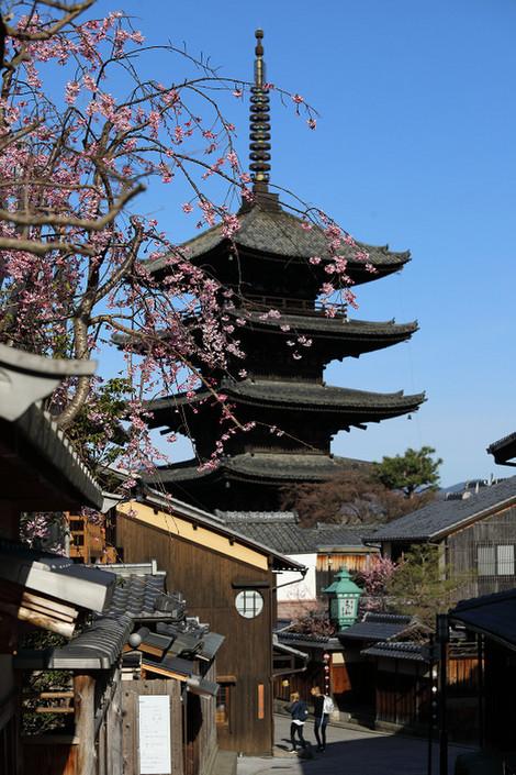 Yasakanotou1803281